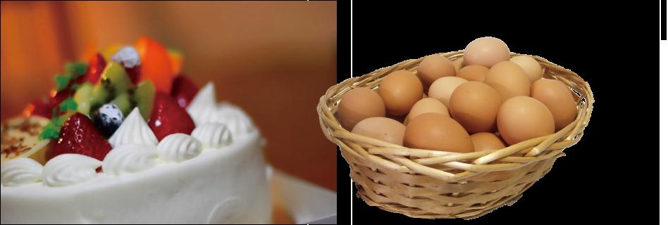 img_egg01