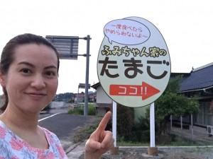 甲田町販売機看板設置